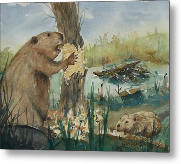 Gnawing Beaver Metal Print