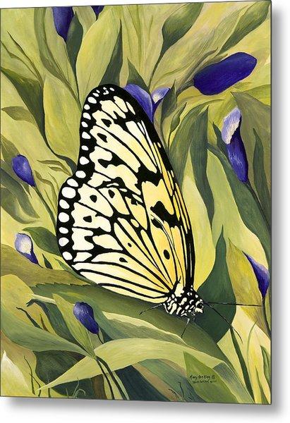 Gold Butterfly In Branson Metal Print