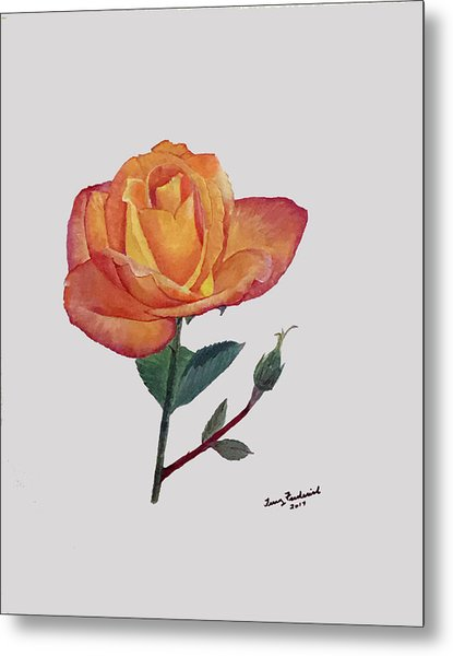 Gold Medal Rose Metal Print
