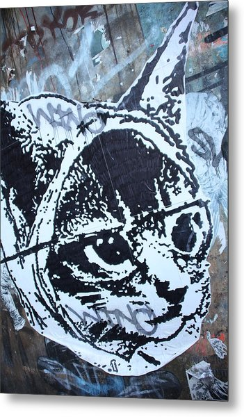 Graf Cat Metal Print by Jez C Self