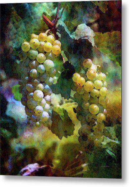 Grape Prism 2739 Idp_2 Metal Print