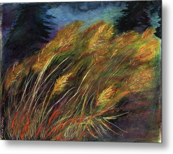 Grasses Metal Print by Diana Ludwig