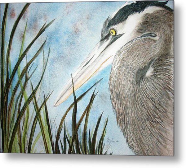 Great Blue Heron Metal Print by Georgia Johnson