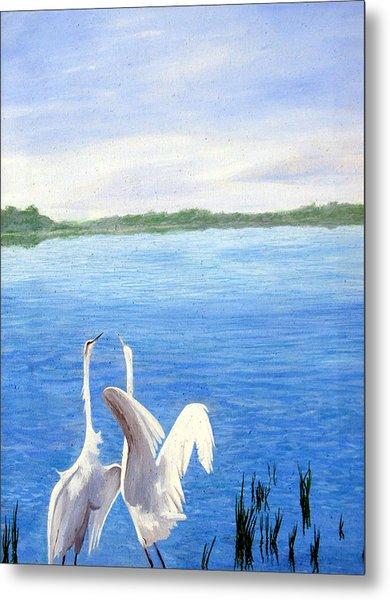 Great Egrets Metal Print by Lauretta Cole Larsen