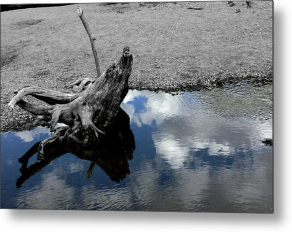 Green Creek Selective Color Metal Print