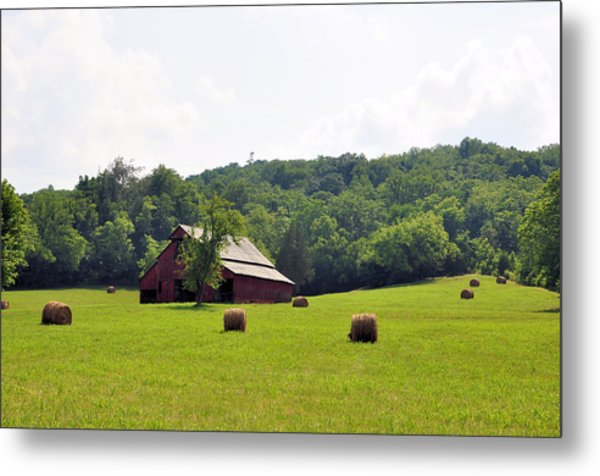 Green Fields Metal Print by Jan Amiss Photography