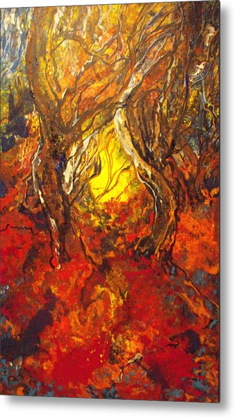 Guiding Light Out Of The Forest Metal Print