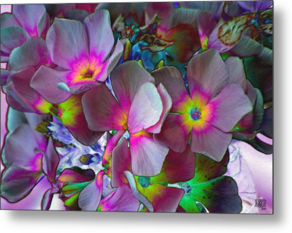 Hanging Color Metal Print by Michele Caporaso