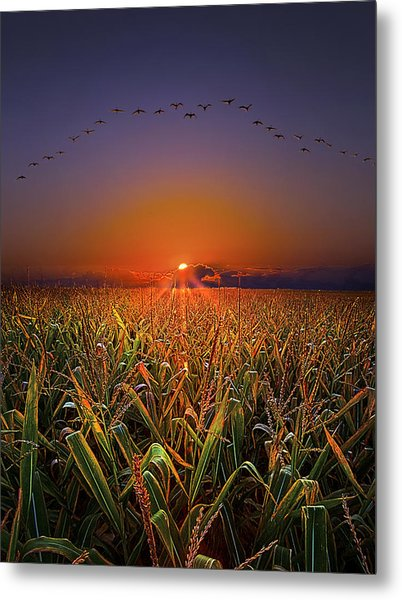 Harvest Migration Metal Print
