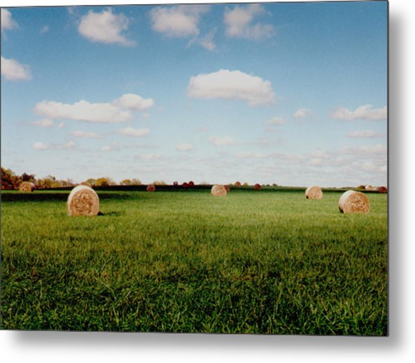 Hay Fields Metal Print