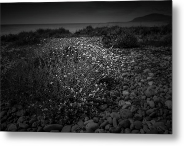 Hernsea Bay And Black Combe Metal Print