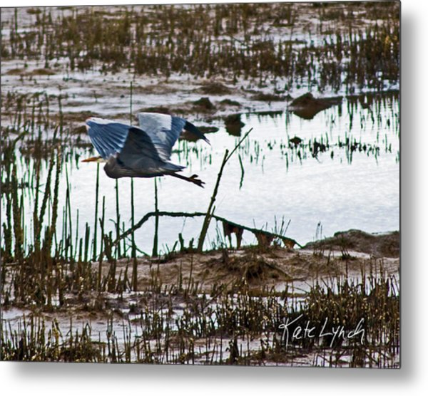 Heron Flight Metal Print