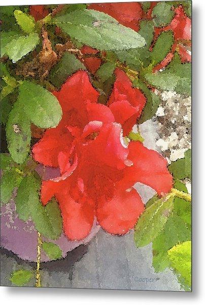 Hibiscus B Metal Print