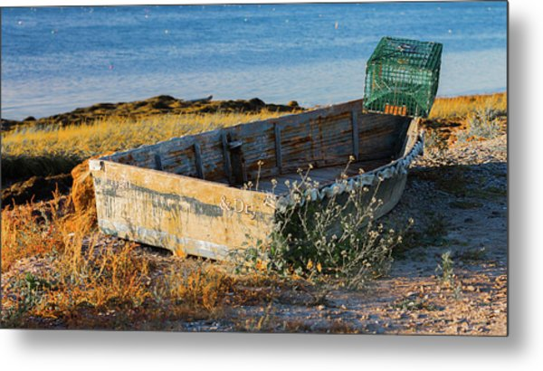 High And Dry Metal Print