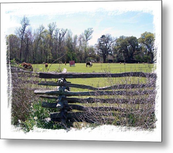 Horse Farm Metal Print by Ralph  Perdomo