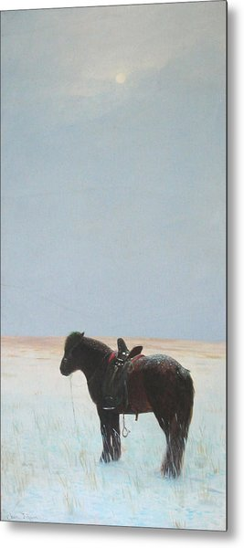 Horse In Snowfield  Metal Print