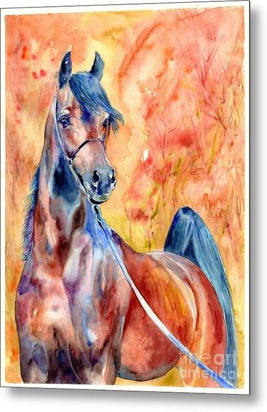 Horse On The Orange Background Metal Print