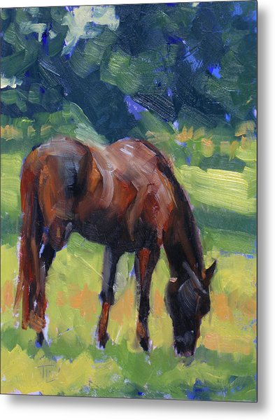 Horse Study No.40 Metal Print by Tracy Wall