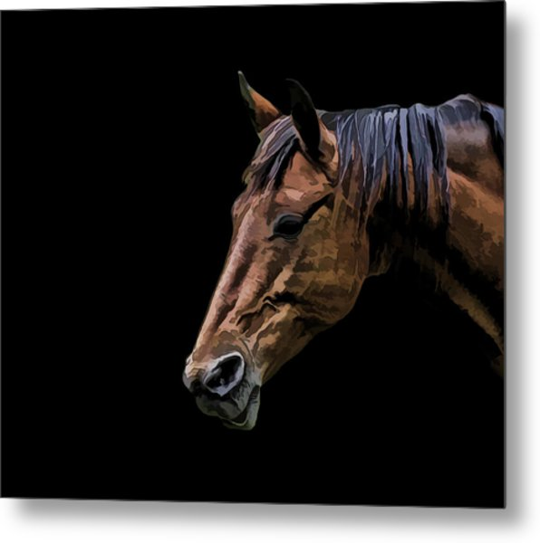 Horsing Around Metal Print by Gary Smith