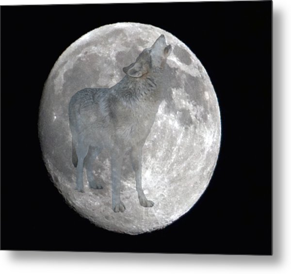 Howl At The Moon Metal Print