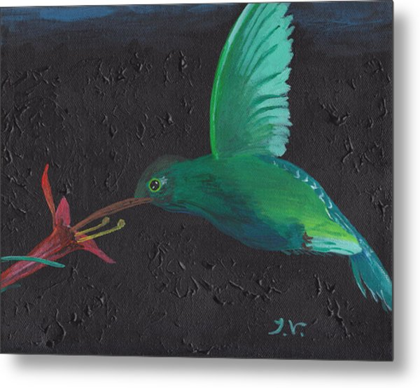 Hummingbird Feeding Metal Print