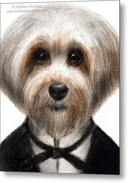 Humorous Dressed Dog Painting By Metal Print