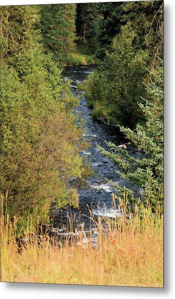 Hyalite Creek Overlook Metal Print