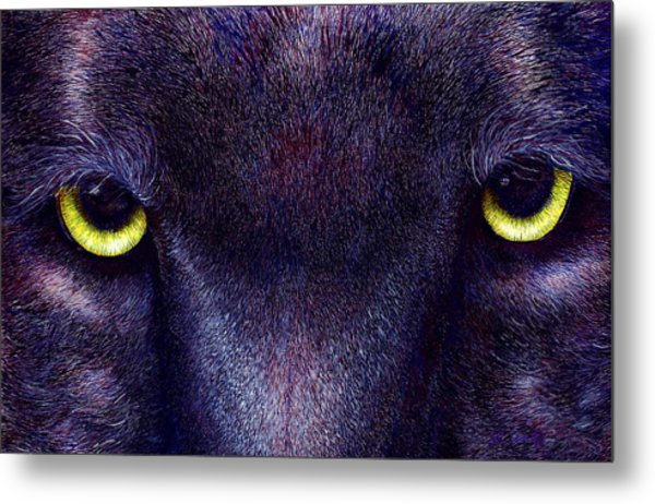 Hyptnotist The Black Panther Metal Print by JoLyn Holladay