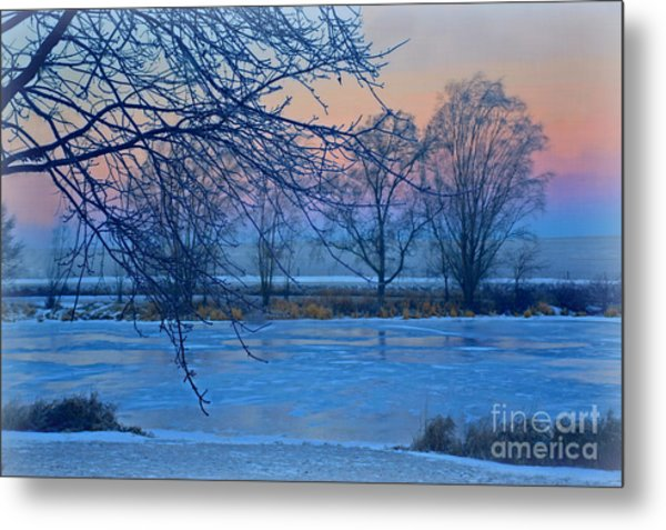 Icy Beauty Metal Print