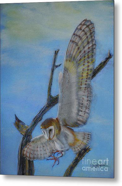In Flight Barn Owl Metal Print