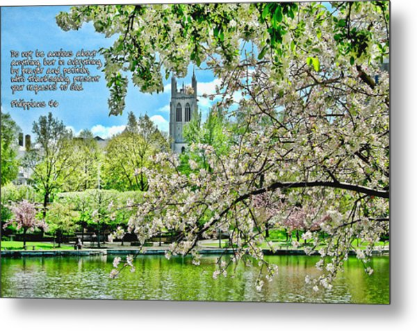 Inspirational - Cherry Blossoms Metal Print