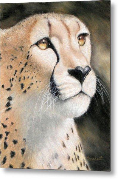 Intensity - Cheetah Metal Print