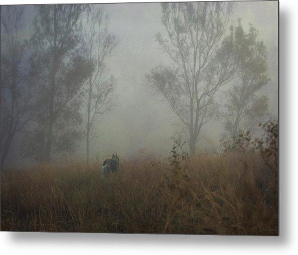 Into The Mist Metal Print