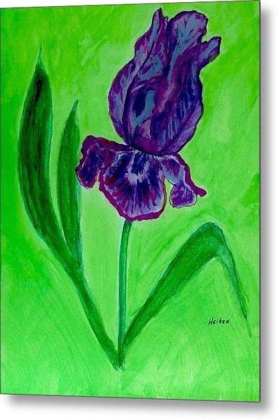 Iris Bloom Metal Print by Marsha Heiken