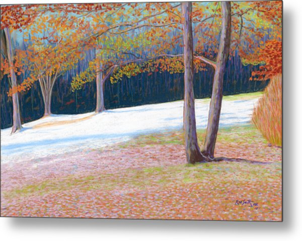 Jack Tree In Early Winter Metal Print by Rae  Smith PSC