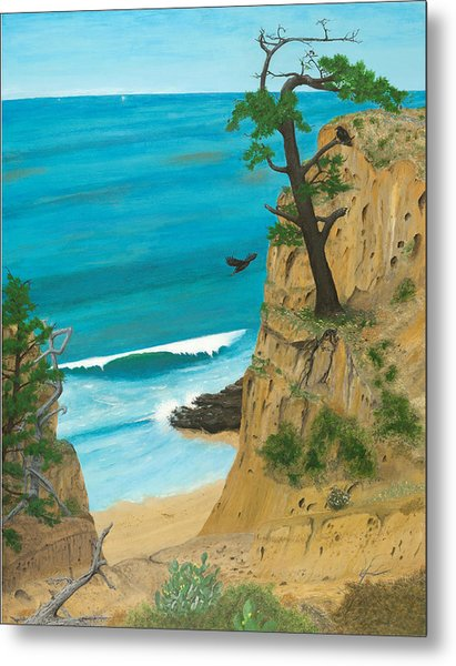 January At Torrey Pines Metal Print