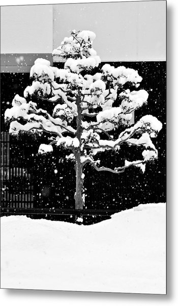 Japanese Tree In The Snow Metal Print