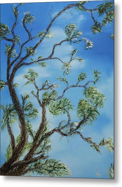 Jim's Tree Metal Print