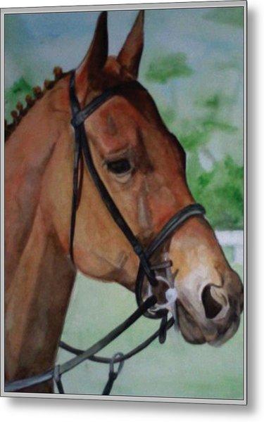 Joe's Horse Metal Print by Tabitha Marshall