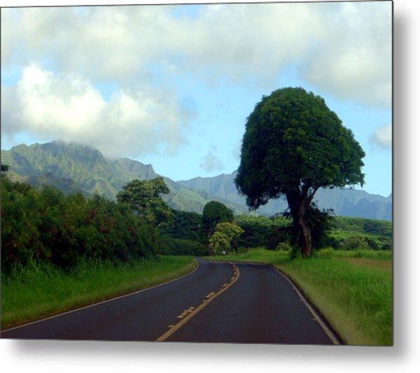 Kauai Road Metal Print by Davida Parker
