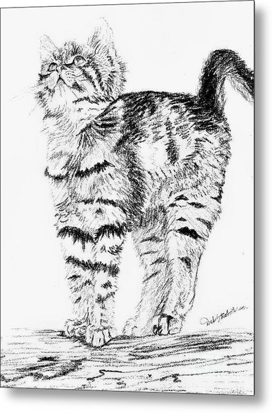 Kitty Stretch Metal Print by Deb Stroh Larson