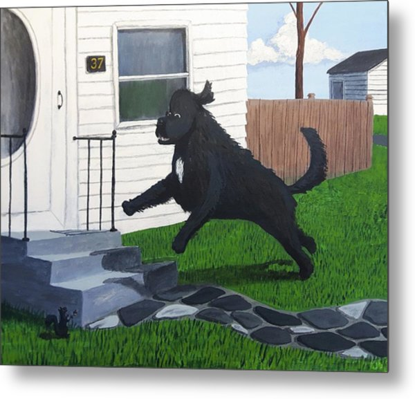 Lady Leaps The Small Front Stairs Metal Print