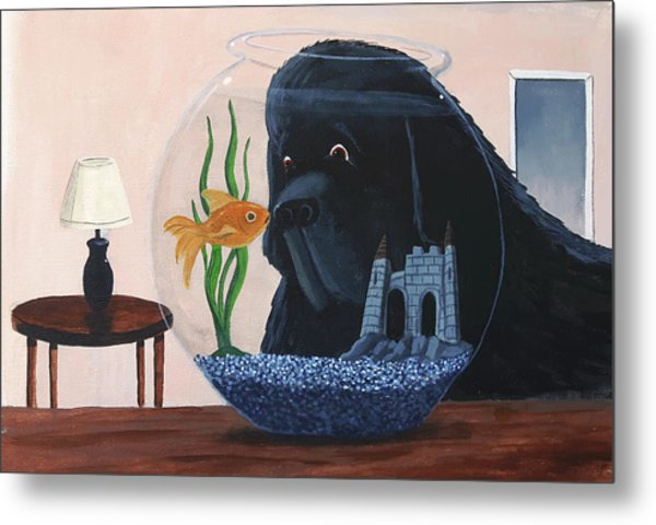 Lady Looks In The Fish Bowl For Mommy And Daddy Metal Print