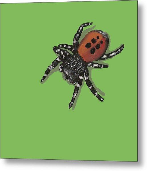 Ladybird Spider Metal Print