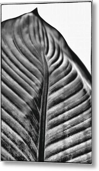 Large Leaf Metal Print