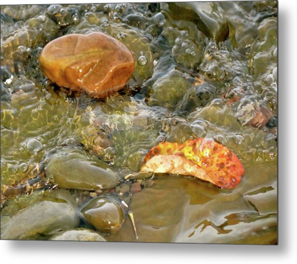 Leaf, Rock Leaf Metal Print