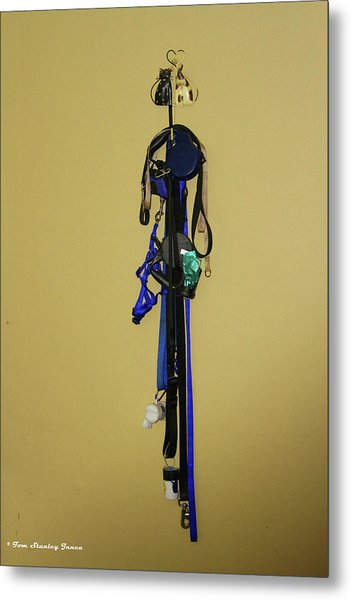 Leash Lady Just Hanging On The Wall Metal Print