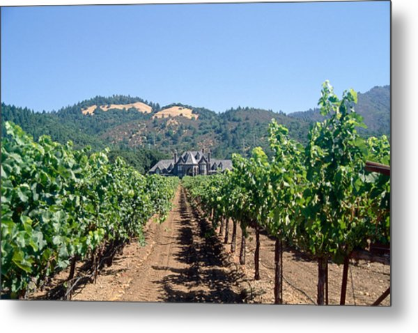 Ledson Winery And Vineyard Sonoma County California Metal Print by George Oze