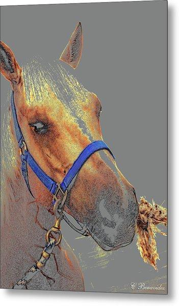 Legend Of A Horse Metal Print