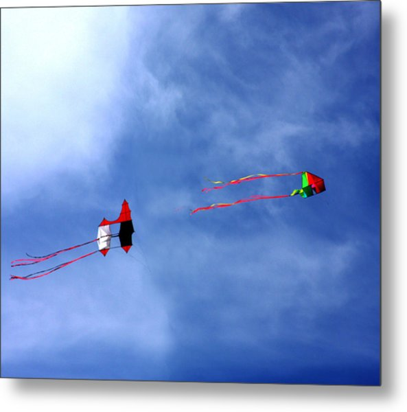 Let's Go Fly 2 Kites Metal Print